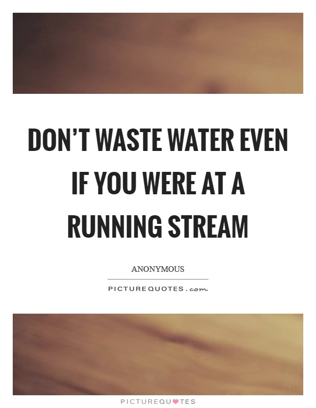 Don't waste water even if you were at a running stream Picture Quote #1