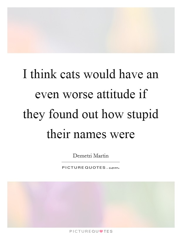 I think cats would have an even worse attitude if they found out how stupid their names were Picture Quote #1
