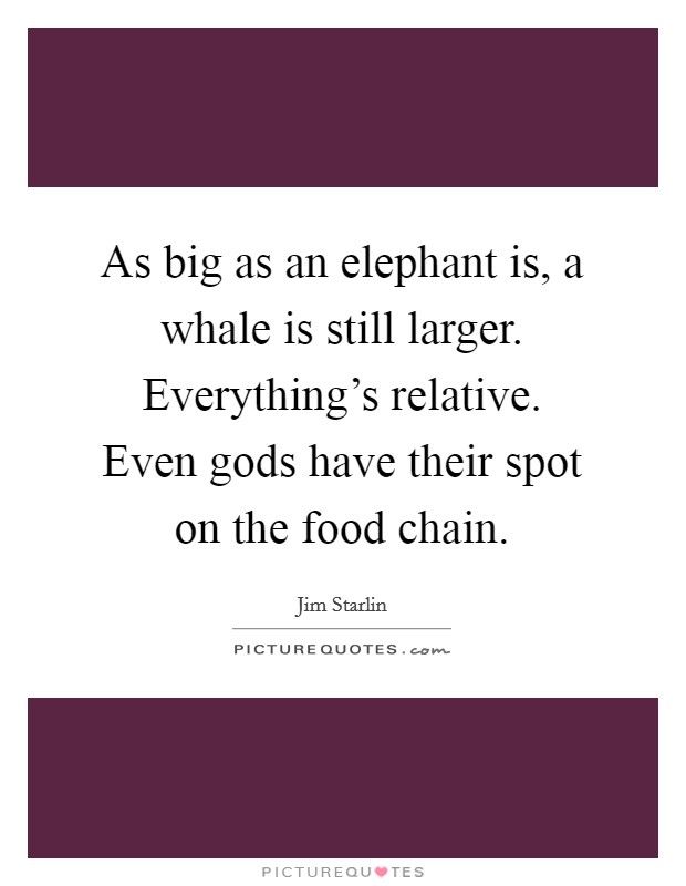 As big as an elephant is, a whale is still larger. Everything's relative. Even gods have their spot on the food chain Picture Quote #1