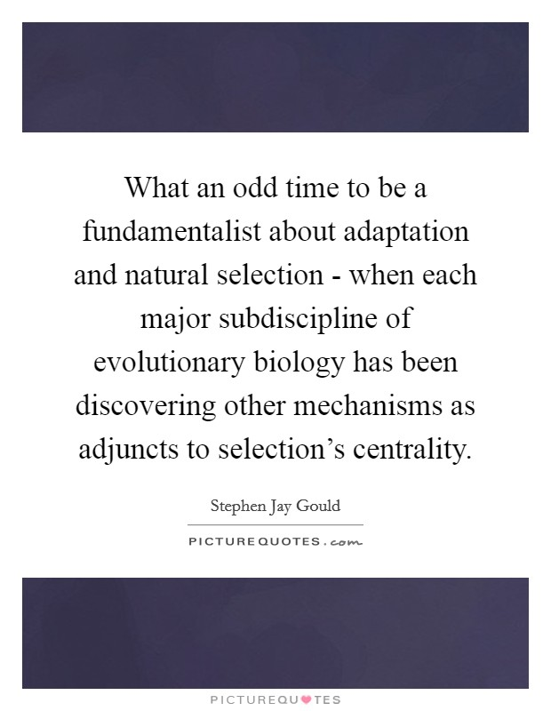 What an odd time to be a fundamentalist about adaptation and natural selection - when each major subdiscipline of evolutionary biology has been discovering other mechanisms as adjuncts to selection's centrality Picture Quote #1