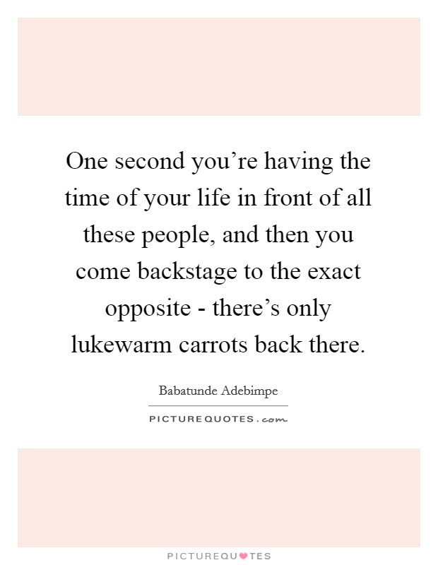 One second you're having the time of your life in front of all these people, and then you come backstage to the exact opposite - there's only lukewarm carrots back there Picture Quote #1