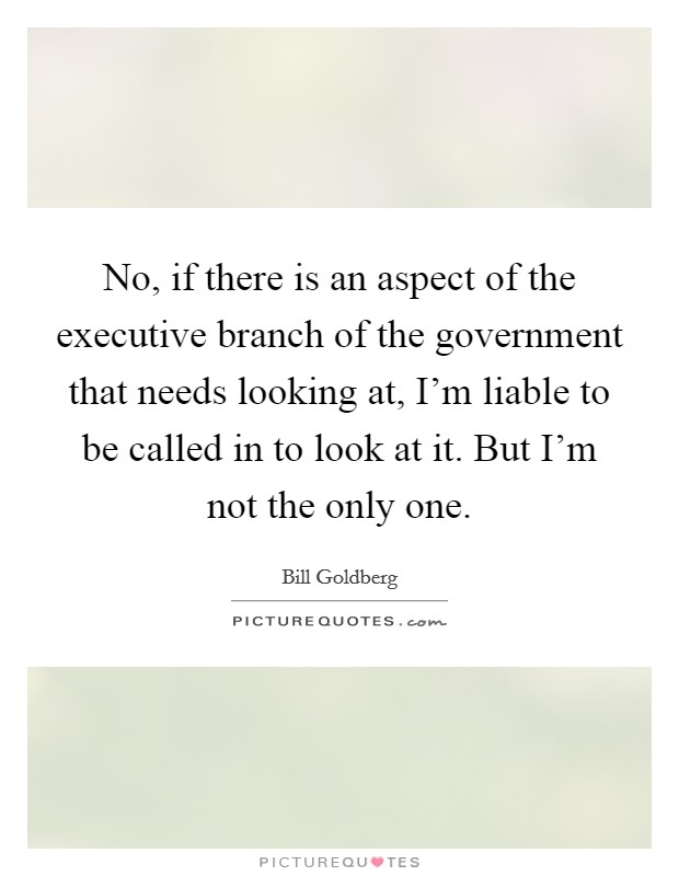 No, if there is an aspect of the executive branch of the government that needs looking at, I'm liable to be called in to look at it. But I'm not the only one Picture Quote #1