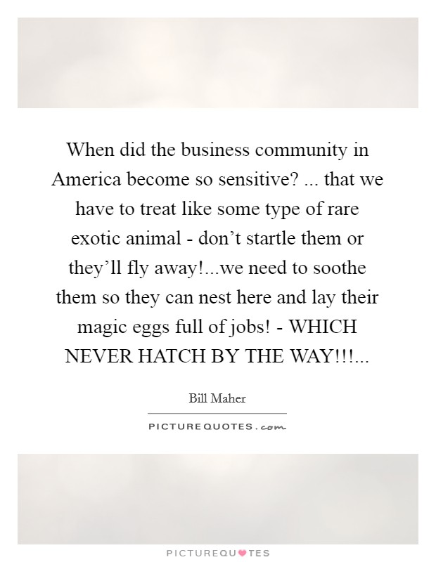 When did the business community in America become so sensitive? ... that we have to treat like some type of rare exotic animal - don't startle them or they'll fly away!...we need to soothe them so they can nest here and lay their magic eggs full of jobs! - WHICH NEVER HATCH BY THE WAY!!! Picture Quote #1