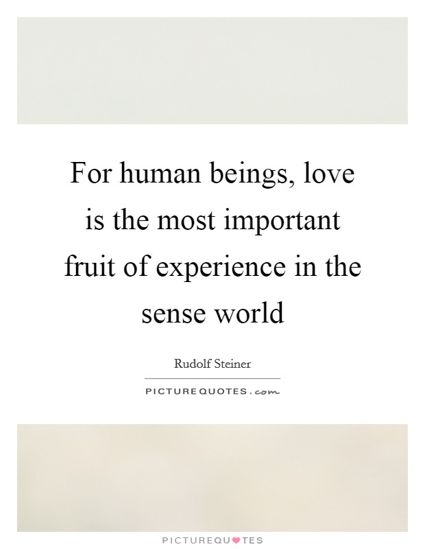 For human beings, love is the most important fruit of experience in the sense world Picture Quote #1