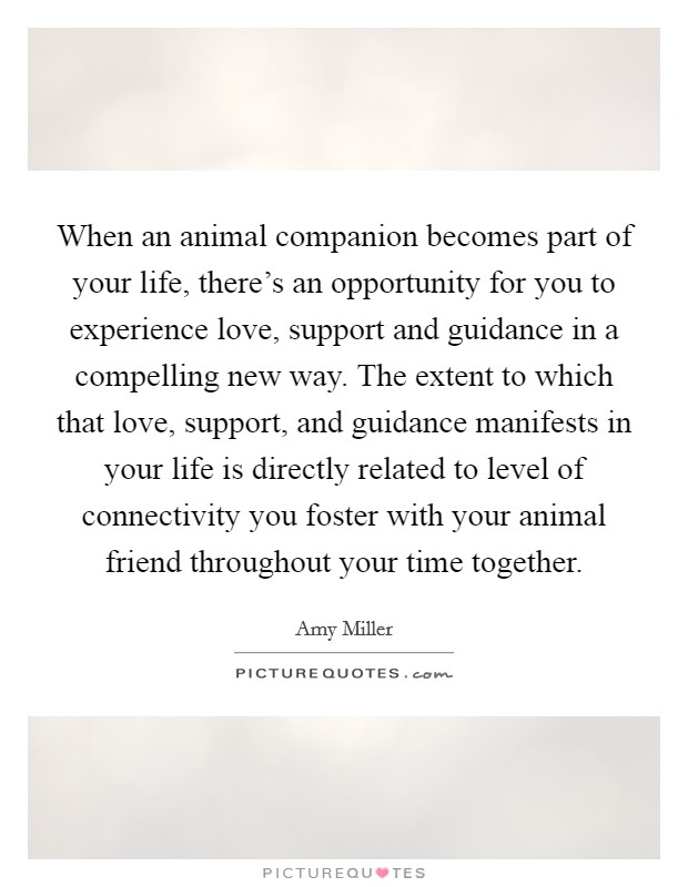When an animal companion becomes part of your life, there's an opportunity for you to experience love, support and guidance in a compelling new way. The extent to which that love, support, and guidance manifests in your life is directly related to level of connectivity you foster with your animal friend throughout your time together Picture Quote #1