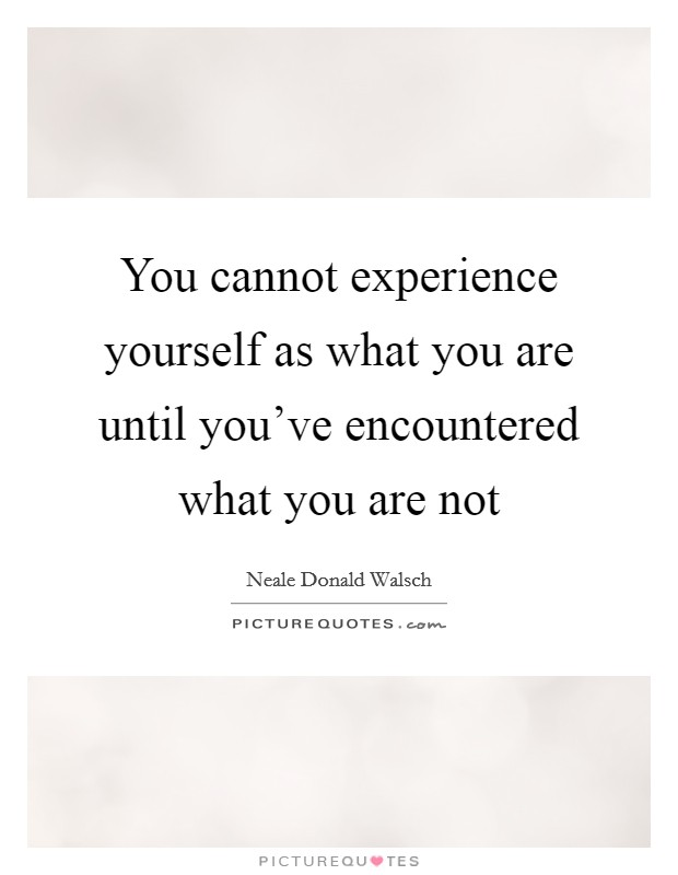 You cannot experience yourself as what you are until you've encountered what you are not Picture Quote #1