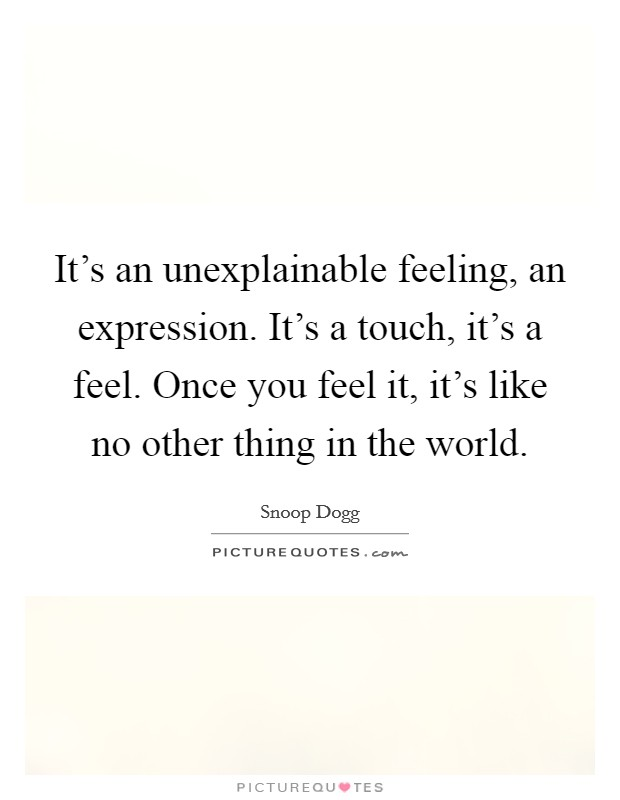 It's an unexplainable feeling, an expression. It's a touch, it's a feel. Once you feel it, it's like no other thing in the world Picture Quote #1