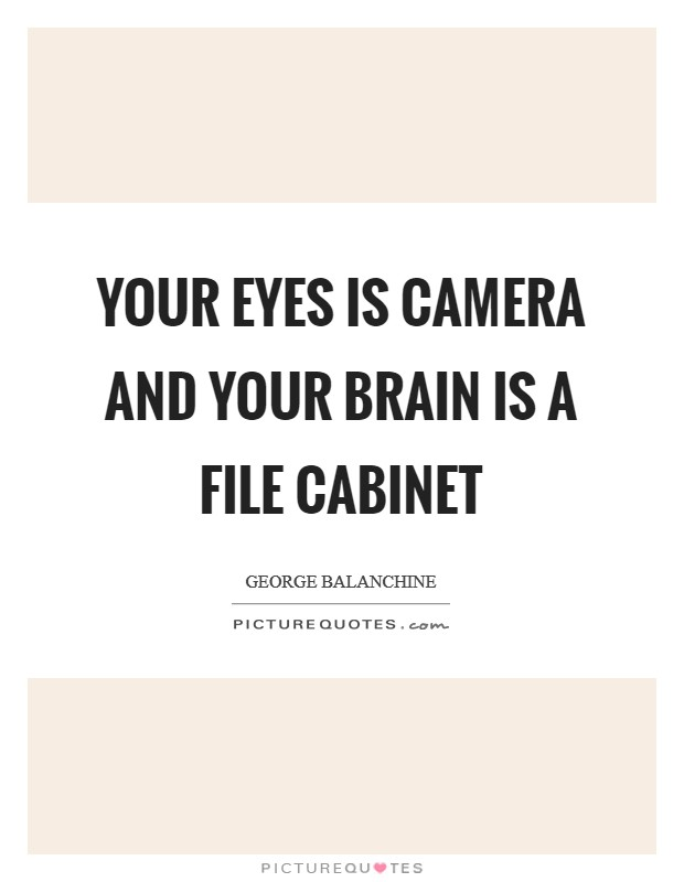 Your eyes is camera and your brain is a file cabinet Picture Quote #1