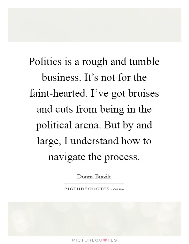 Politics is a rough and tumble business. It's not for the faint-hearted. I've got bruises and cuts from being in the political arena. But by and large, I understand how to navigate the process Picture Quote #1