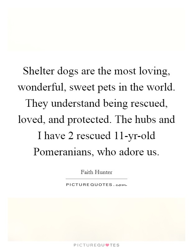 Shelter dogs are the most loving, wonderful, sweet pets in the world. They understand being rescued, loved, and protected. The hubs and I have 2 rescued 11-yr-old Pomeranians, who adore us Picture Quote #1