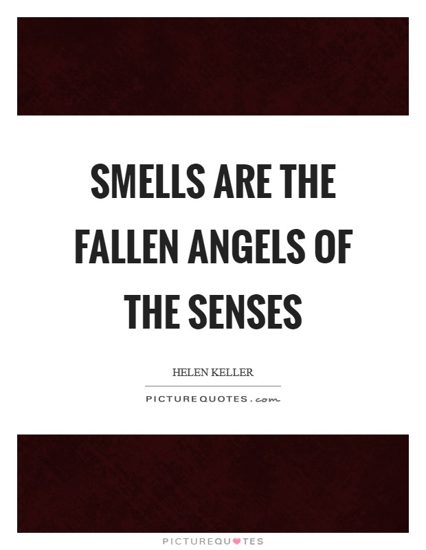 Smells are the fallen angels of the senses Picture Quote #1
