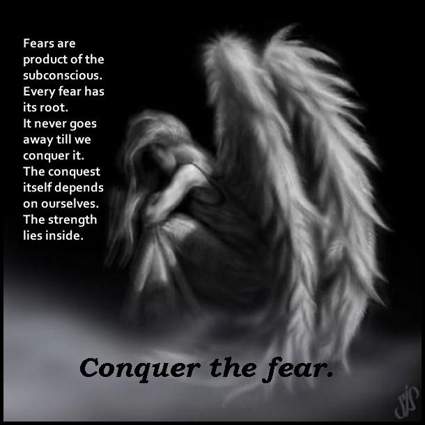 Conquer Quote 9 Picture Quote #1