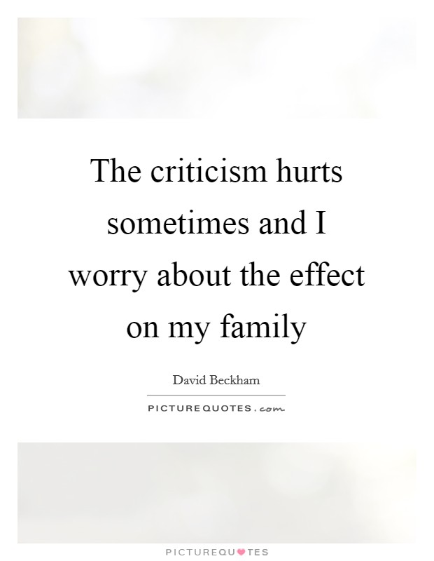 The criticism hurts sometimes and I worry about the effect on my family Picture Quote #1