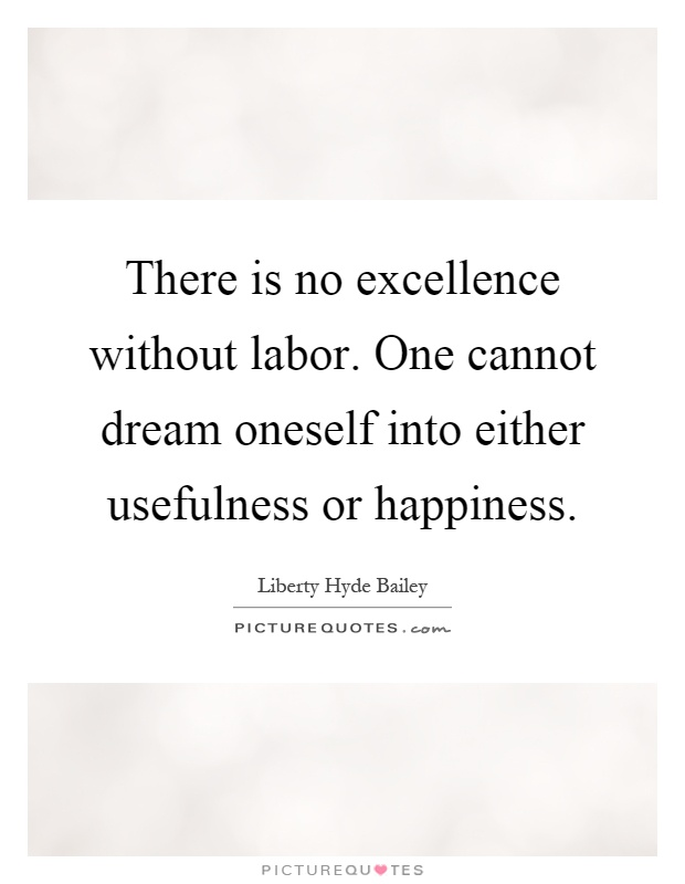 There is no excellence without labor. One cannot dream oneself into either usefulness or happiness Picture Quote #1