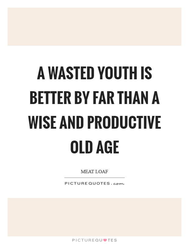 A wasted youth is better by far than a wise and productive old age Picture Quote #1