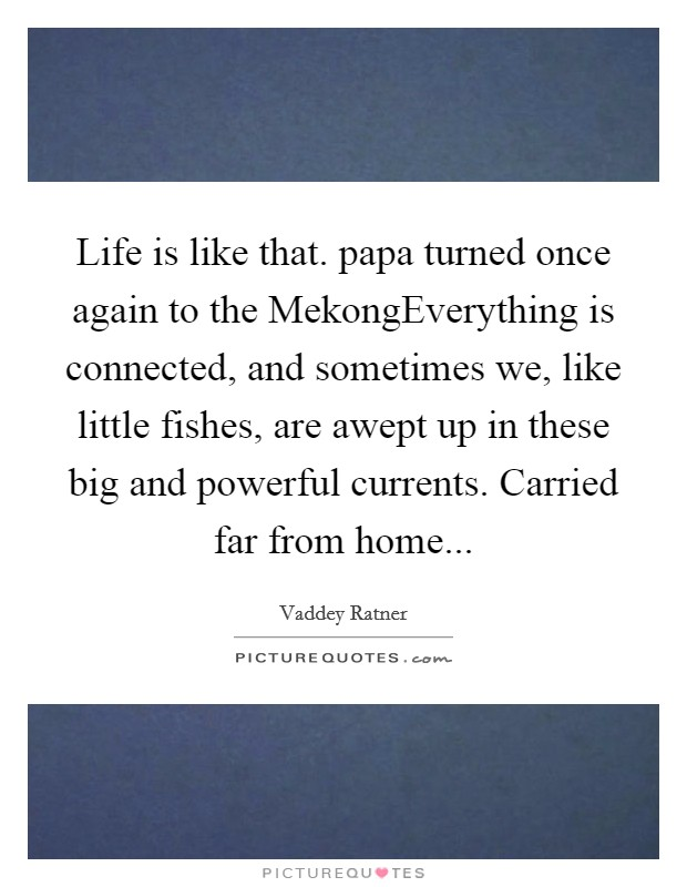 Life is like that. papa turned once again to the MekongEverything is connected, and sometimes we, like little fishes, are awept up in these big and powerful currents. Carried far from home Picture Quote #1