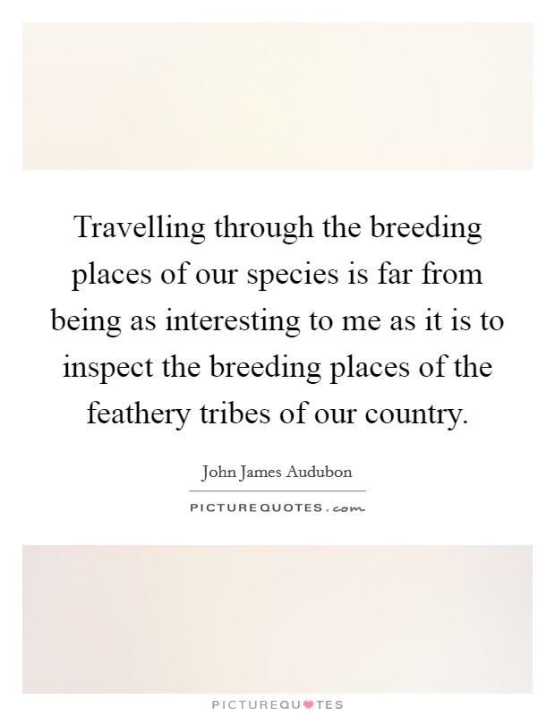 Travelling through the breeding places of our species is far from being as interesting to me as it is to inspect the breeding places of the feathery tribes of our country Picture Quote #1