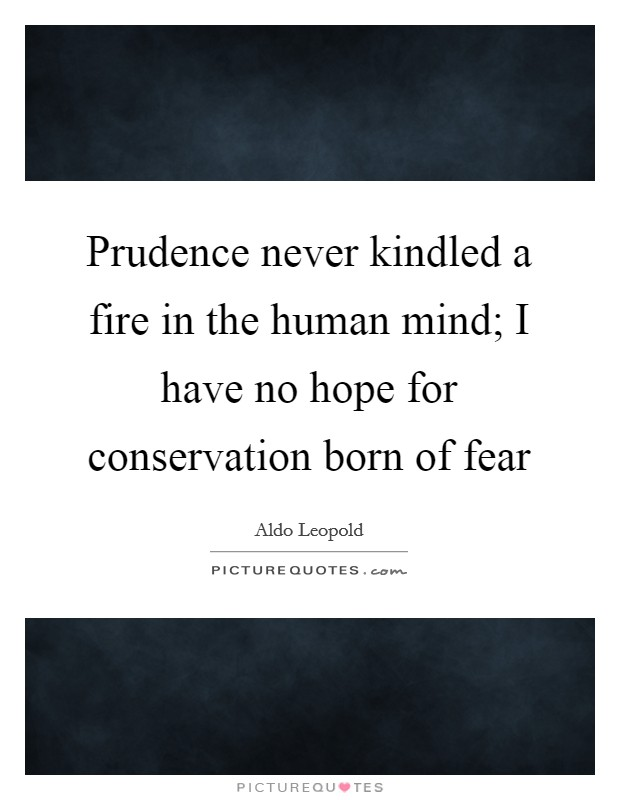 Prudence never kindled a fire in the human mind; I have no hope for conservation born of fear Picture Quote #1