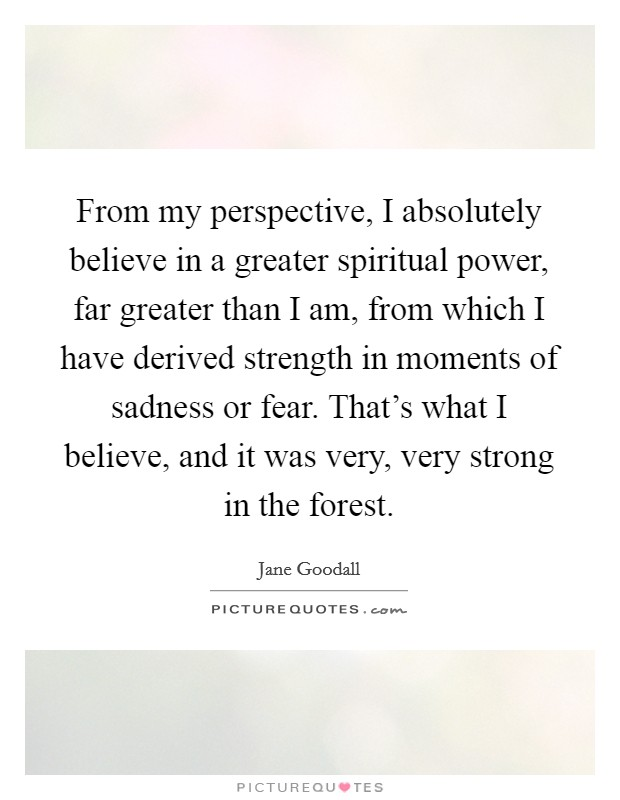 From my perspective, I absolutely believe in a greater spiritual power, far greater than I am, from which I have derived strength in moments of sadness or fear. That's what I believe, and it was very, very strong in the forest Picture Quote #1