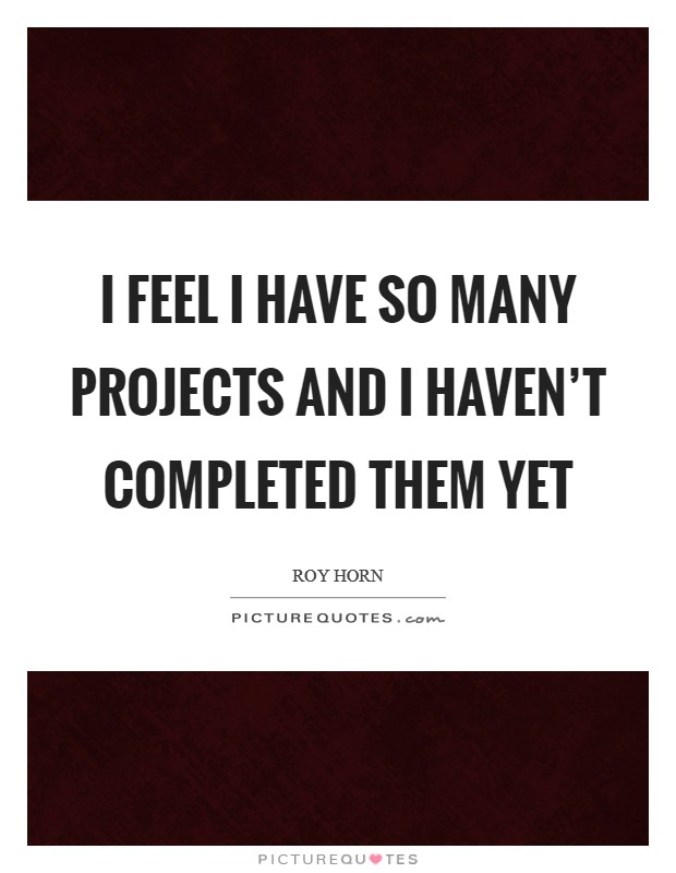 I feel I have so many projects and I haven't completed them yet Picture Quote #1