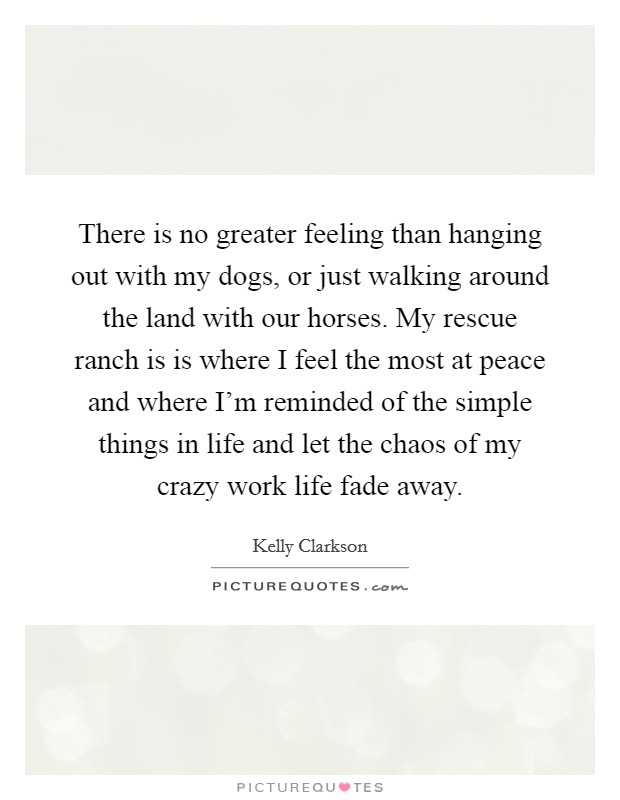 There is no greater feeling than hanging out with my dogs, or just walking around the land with our horses. My rescue ranch is is where I feel the most at peace and where I'm reminded of the simple things in life and let the chaos of my crazy work life fade away Picture Quote #1