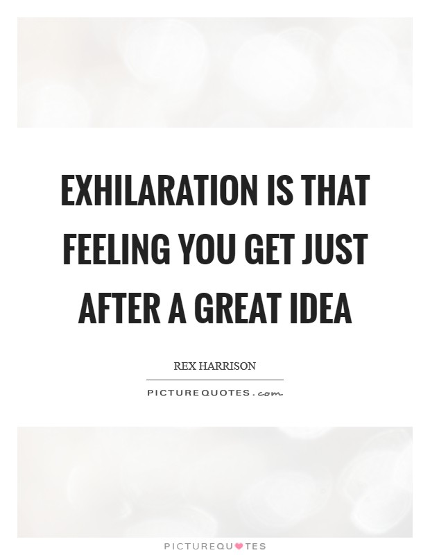 Exhilaration is that feeling you get just after a great idea Picture Quote #1