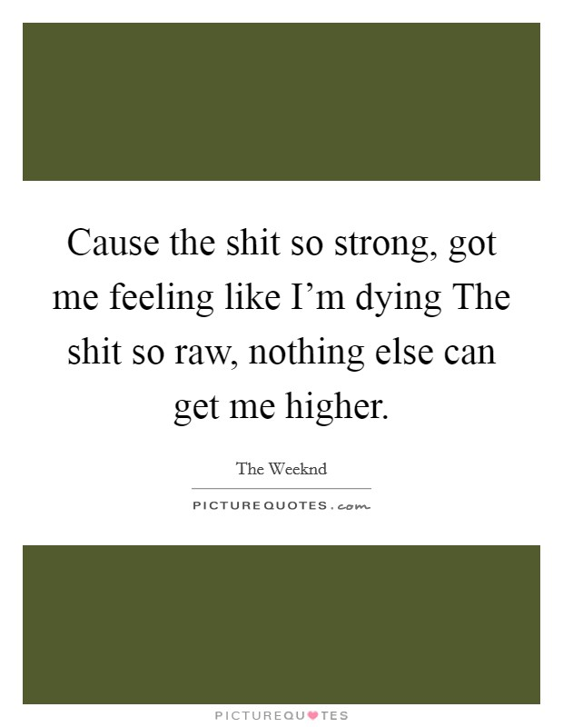 Cause the shit so strong, got me feeling like I'm dying The shit so raw, nothing else can get me higher Picture Quote #1