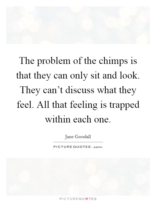 The problem of the chimps is that they can only sit and look. They can't discuss what they feel. All that feeling is trapped within each one Picture Quote #1