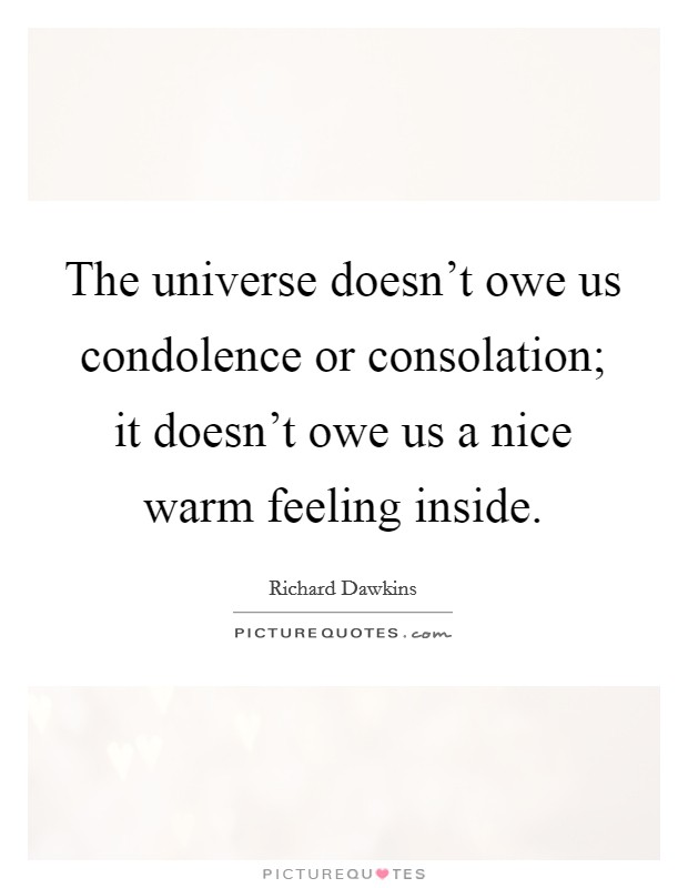 The universe doesn't owe us condolence or consolation; it doesn't owe us a nice warm feeling inside. Picture Quote #1
