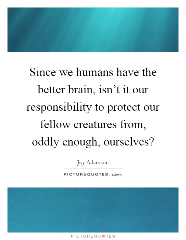 Since we humans have the better brain, isn't it our responsibility to protect our fellow creatures from, oddly enough, ourselves? Picture Quote #1