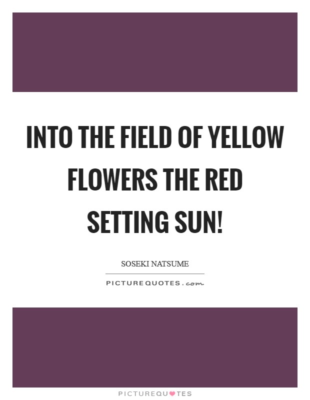 Into the field of Yellow flowers The red setting sun! Picture Quote #1