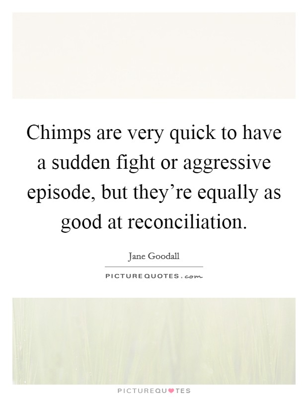 Chimps are very quick to have a sudden fight or aggressive episode, but they're equally as good at reconciliation Picture Quote #1