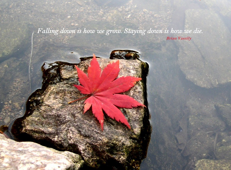 Falling Down Quote 13 Picture Quote #1