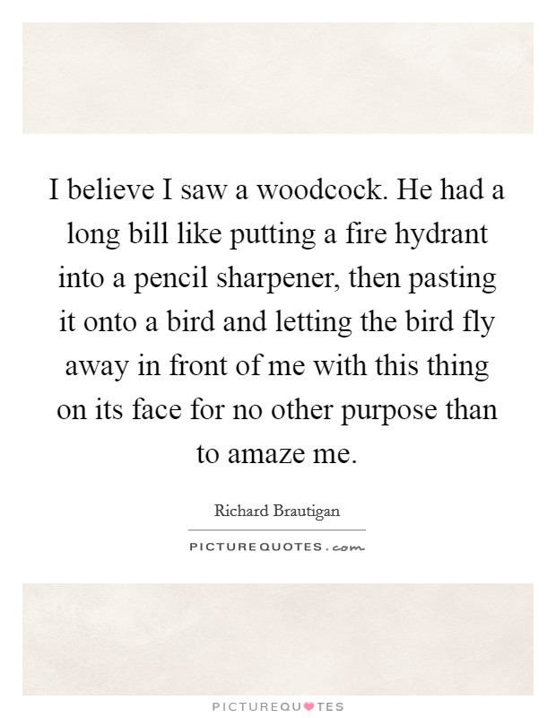 I believe I saw a woodcock. He had a long bill like putting a fire hydrant into a pencil sharpener, then pasting it onto a bird and letting the bird fly away in front of me with this thing on its face for no other purpose than to amaze me Picture Quote #1