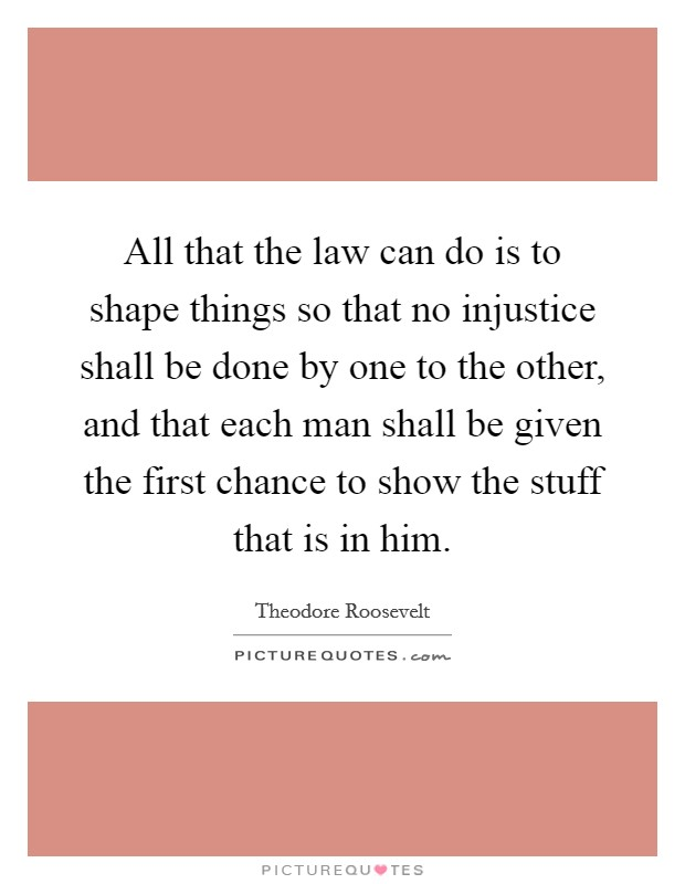 All that the law can do is to shape things so that no injustice shall be done by one to the other, and that each man shall be given the first chance to show the stuff that is in him Picture Quote #1