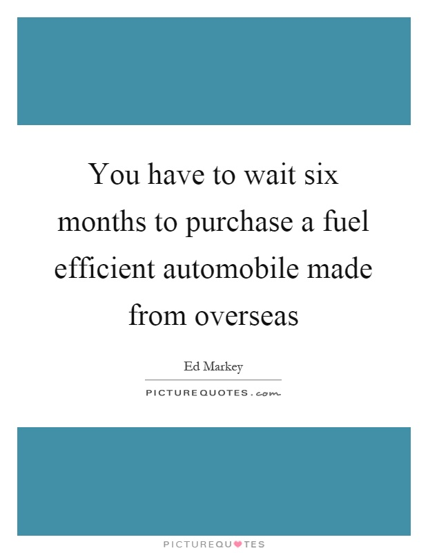 You have to wait six months to purchase a fuel efficient automobile made from overseas Picture Quote #1