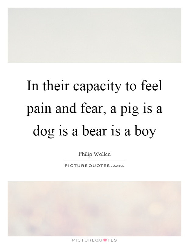 In their capacity to feel pain and fear, a pig is a dog is a bear is a boy Picture Quote #1