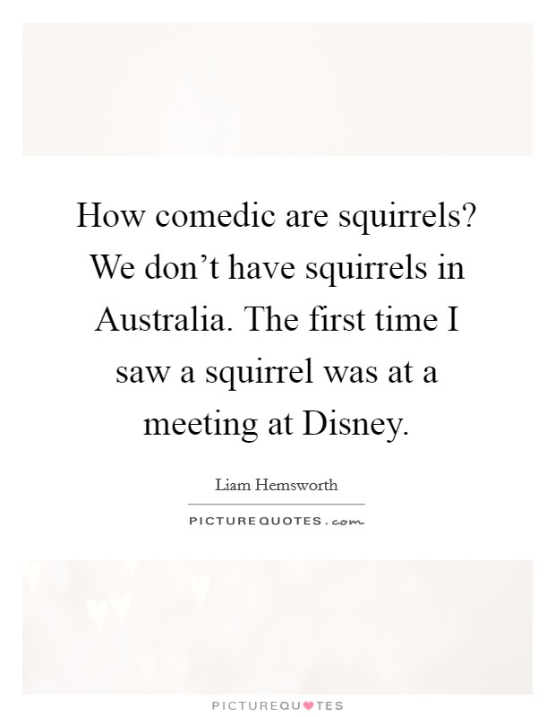 How comedic are squirrels? We don't have squirrels in Australia. The first time I saw a squirrel was at a meeting at Disney Picture Quote #1