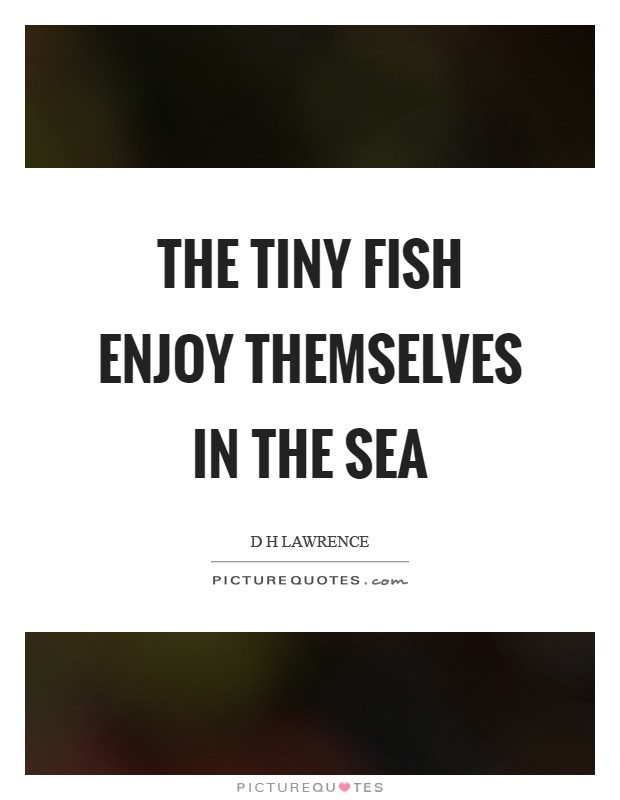 The tiny fish enjoy themselves in the sea Picture Quote #1