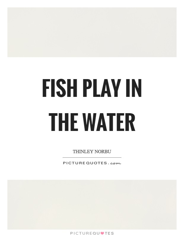 Fish play in the water Picture Quote #1