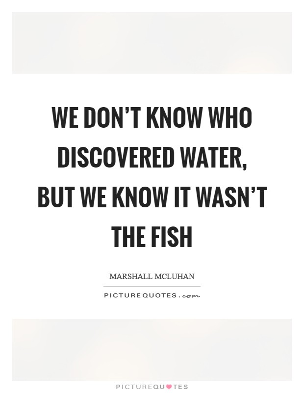 We don't know who discovered water, but we know it wasn't the fish Picture Quote #1