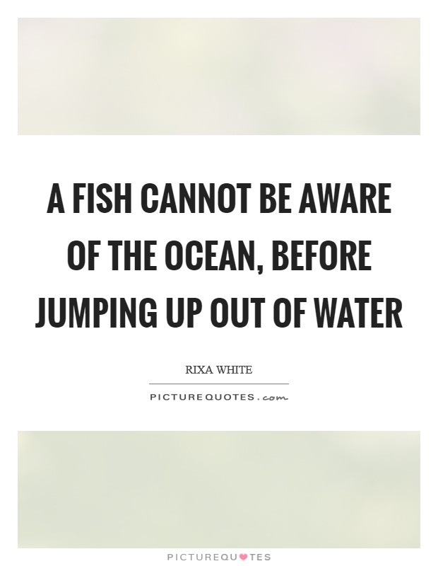 A fish cannot be aware of the ocean, before jumping up out of water Picture Quote #1