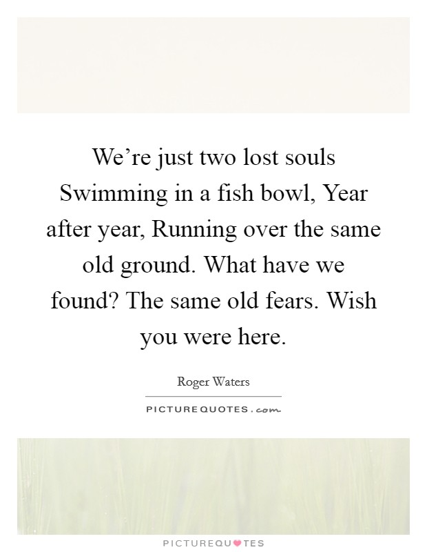 We're just two lost souls Swimming in a fish bowl, Year after year, Running over the same old ground. What have we found? The same old fears. Wish you were here. Picture Quote #1