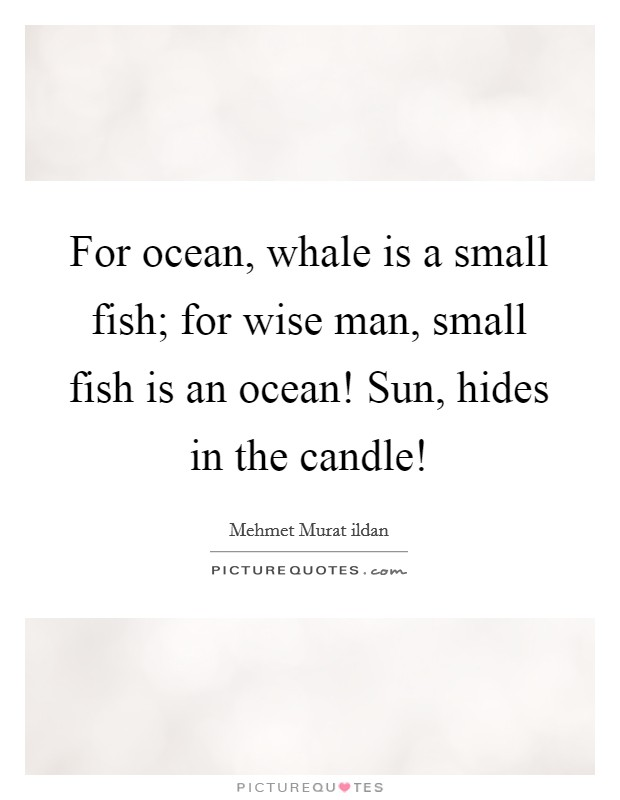 For ocean, whale is a small fish; for wise man, small fish is an ocean! Sun, hides in the candle! Picture Quote #1