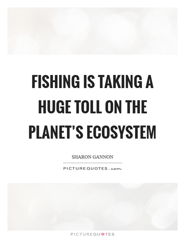 Fishing is taking a huge toll on the planet's ecosystem Picture Quote #1