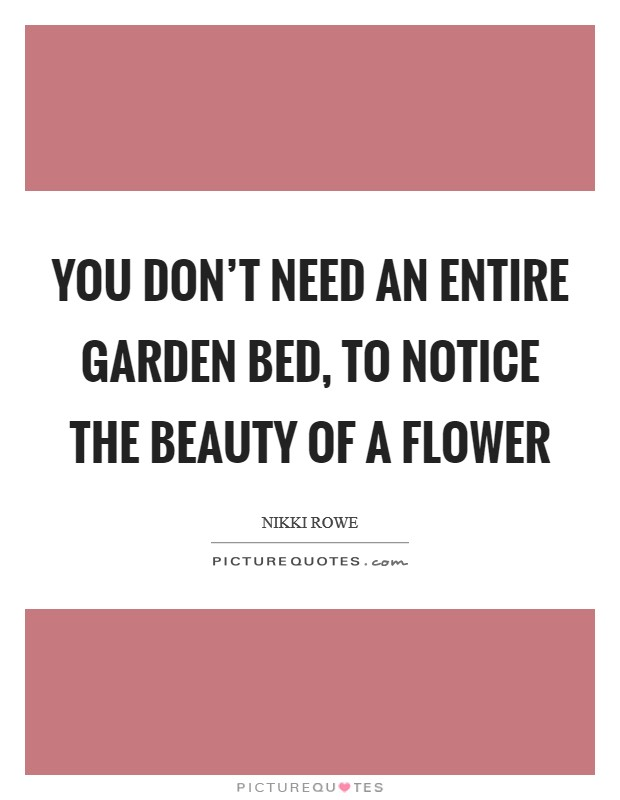 You don't need an entire garden bed, to notice the beauty of a flower Picture Quote #1