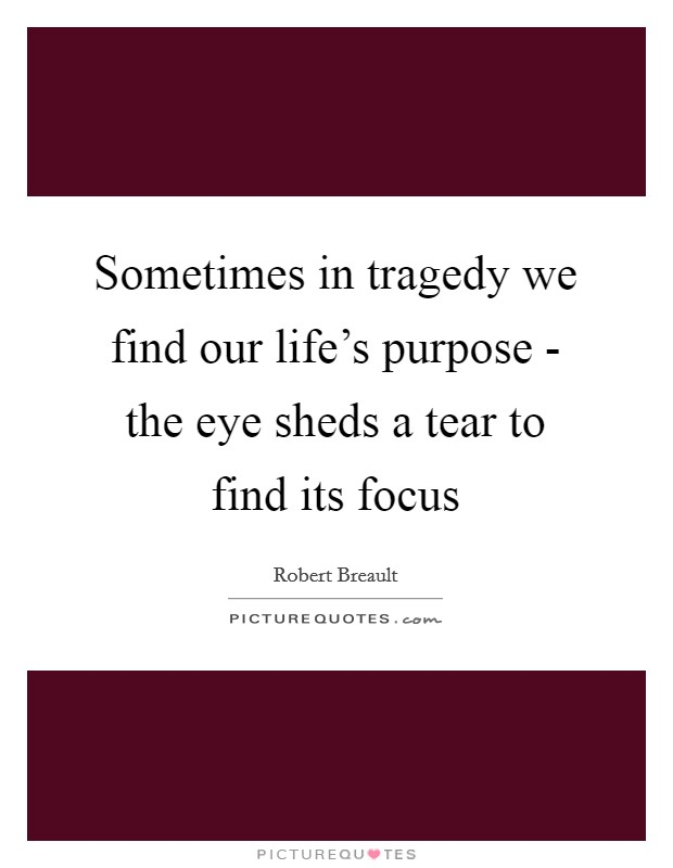 Sometimes in tragedy we find our life's purpose - the eye sheds a tear to find its focus Picture Quote #1