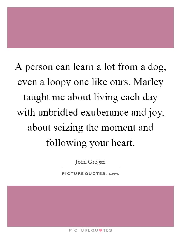 A person can learn a lot from a dog, even a loopy one like ours. Marley taught me about living each day with unbridled exuberance and joy, about seizing the moment and following your heart Picture Quote #1