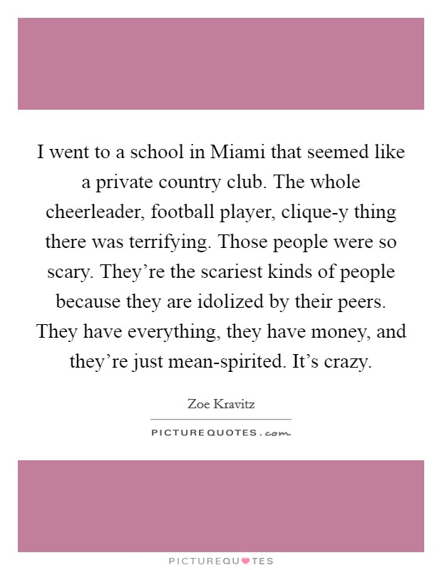 I went to a school in Miami that seemed like a private country club. The whole cheerleader, football player, clique-y thing there was terrifying. Those people were so scary. They're the scariest kinds of people because they are idolized by their peers. They have everything, they have money, and they're just mean-spirited. It's crazy Picture Quote #1