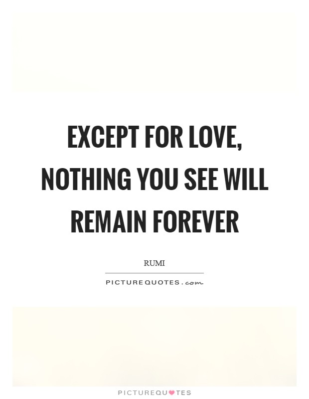 Except for Love, nothing you see will remain forever Picture Quote #1